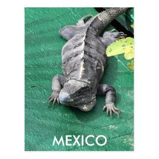 Mexiko-Postkarte Postkarte