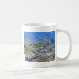 Michigan-Forelle-Fischen Kaffeetasse