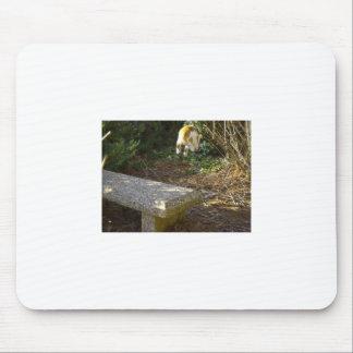 Midflight Mousepad