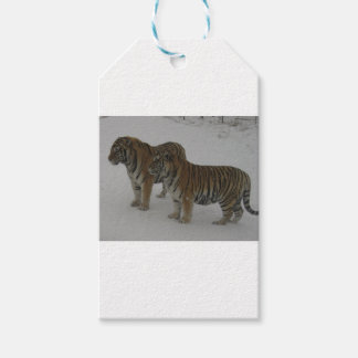 Mieten zwei sibirische Tiger Geschenkanhänger