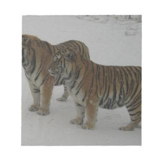 Mieten zwei sibirische Tiger Notizblock