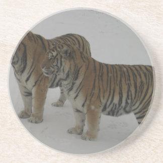 Mieten zwei sibirische Tiger Untersetzer