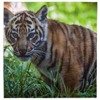MieteSumatran Tiger CUB Serviette