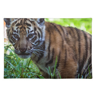 MieteSumatran Tiger CUB Stofftischset