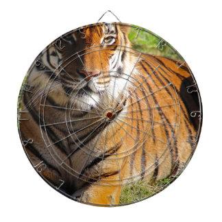 Mietmalaiischer Tiger Dartscheibe