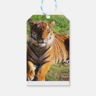 Mietmalaiischer Tiger Geschenkanhänger