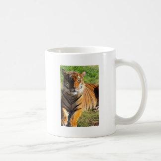Mietmalaiischer Tiger Kaffeetasse