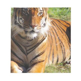 Mietmalaiischer Tiger Notizblock