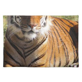 Mietmalaiischer Tiger Stofftischset