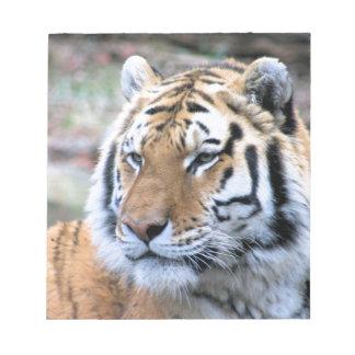 Mietstoic-königlicher bengalischer Tiger Notizblock