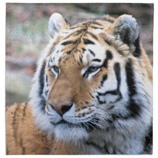 Mietstoic-königlicher bengalischer Tiger Stoffserviette