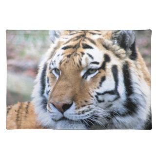 Mietstoic-königlicher bengalischer Tiger Tischset