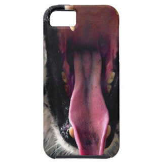 Miettiger-Lager-Kiefer iPhone 5 Cover