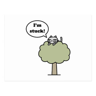 Miezekatze fest im Baum Postkarte