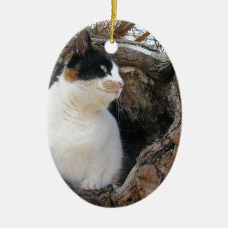 Miezekatze in einer Baum-Höhle Ovales Keramik Ornament
