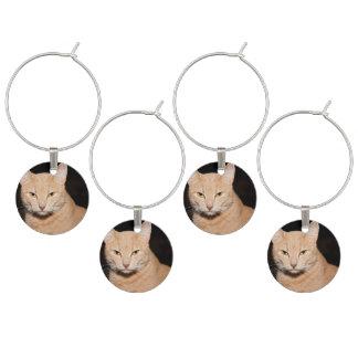 Miezekatze-Katzen-Lächeln Weinglas Anhänger