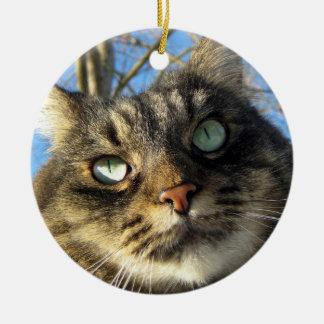 Miezekatze-Katzen-Verzierung Rundes Keramik Ornament