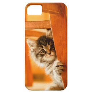 Miezekatze unter Stuhl iPhone 5 Case