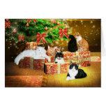 Miezekatzekatze Weihnachten Grußkarten