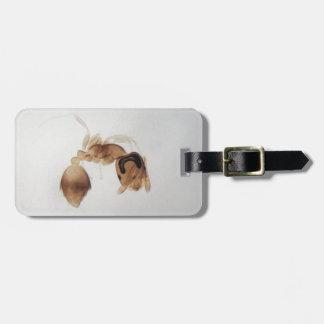 Mikroskop-Foto einer Ameise Kofferanhänger