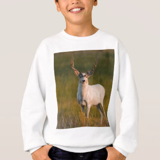 Milderer weißer Dollar 2 Sweatshirt