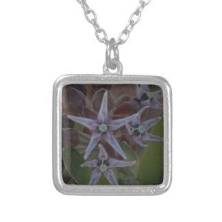 Milkweed-Blüte Versilberte Kette