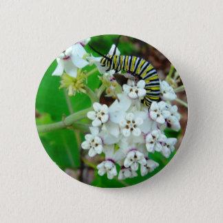 Milkweed und Monarch Runder Button 5,1 Cm