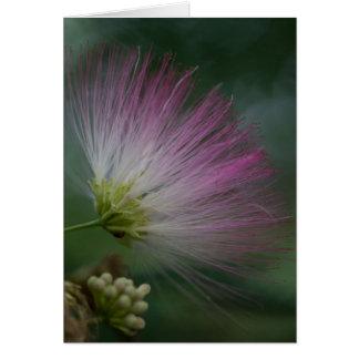 Mimosen-Baum-Rosa-Wildblume-Blumenkarte Karte