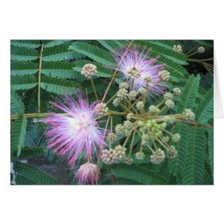 Mimosen-Blüte Notecard Karte