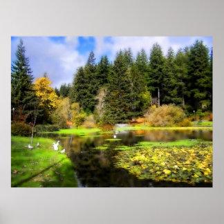Mingus Park - Gurren-Bucht, Oregon Poster