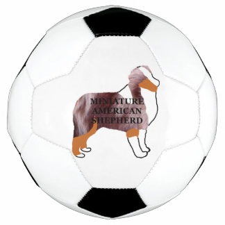 mini australischer roter merle Namensilo Fußball