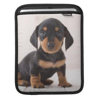 MiniaturDackel-Sitzen Sleeve Für iPads