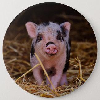 Minischwein Runder Button 15,3 Cm