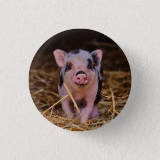 Minischwein Runder Button 2,5 Cm