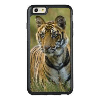 Mirchaini CUB weiblicher Tiger (Bandhavgarh, OtterBox iPhone 6/6s Plus Hülle