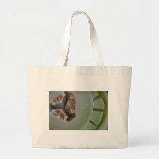 Miscellaneous - Honeydew Melon Pattern