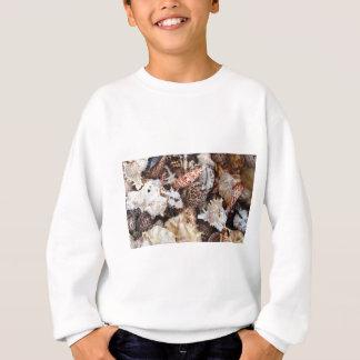 MischSeashells für den Seeufer-Liebhaber Sweatshirt