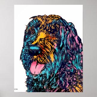 Mischzucht-Hund Poster