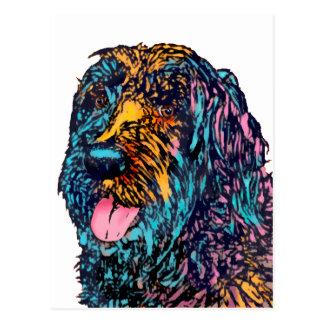 Mischzucht-Hund Postkarte