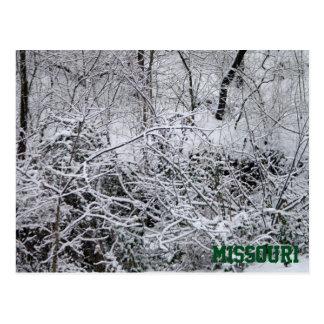 Missouri-Blizzard Postkarte