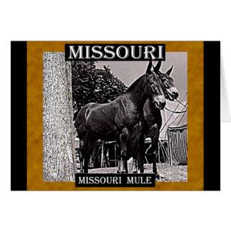 Missouri-Maultier Karte