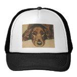 Mit Augen goldener irischer Hund Browns Truckerkappen