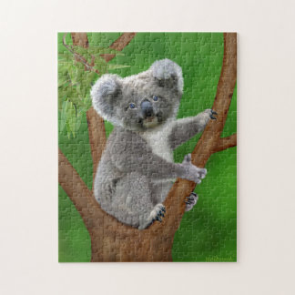 Mit blauen Augen Baby-Koala-Bär Puzzle