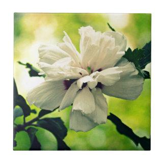 Mit Blumen Keramikkacheln