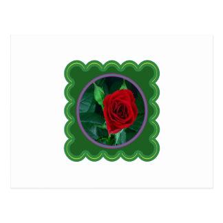 Mit Blumengeschenke des Rosen-Blumen-sinnliche Postkarte
