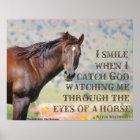 Mit den Augen eines Pferds Poster