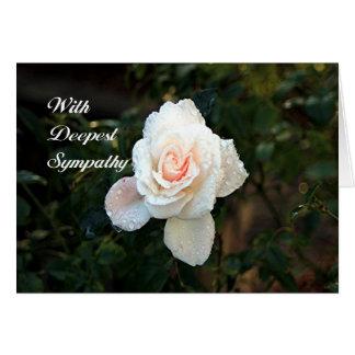 Mit tiefster Beileids-Rose (erblassen Sie - rosa Karte