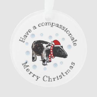 Mitfühlendes Weihnachten Ornament