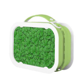 Mittagessen-Kasten - Meer der Kleeblätter Brotdose