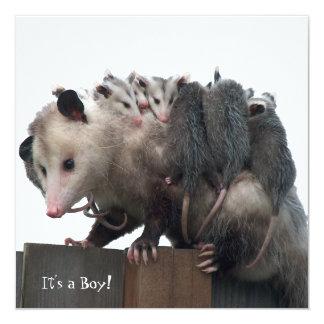 Mitteilung Mutter-Possum Humorous Birth Foto Quadratische 13,3 Cm Einladungskarte